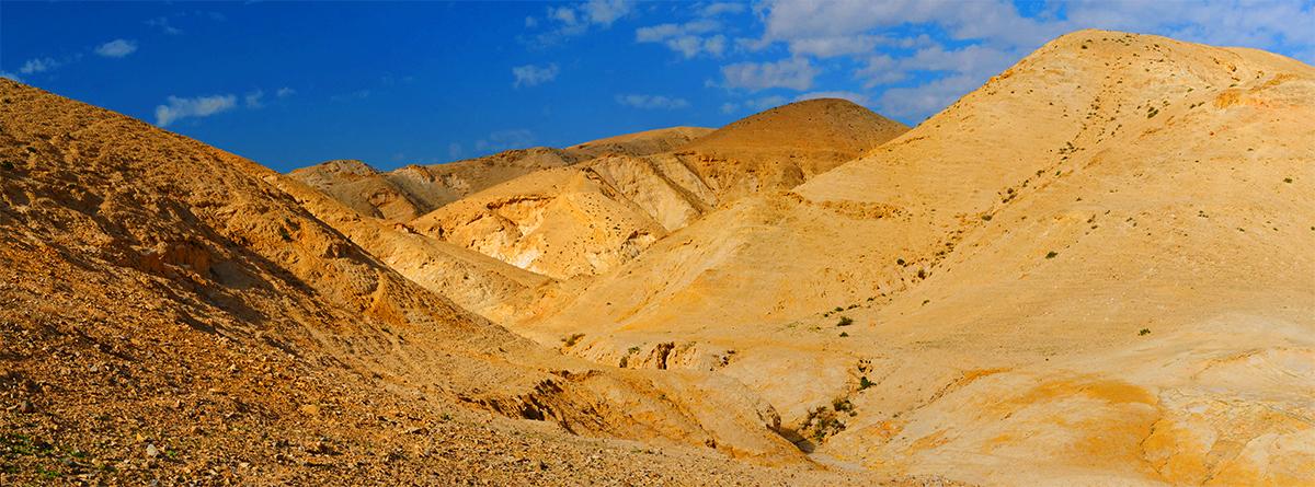 LDS Desert Tours in Israel